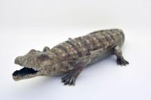 Encrier crocodile en bronze polychrome de 1900